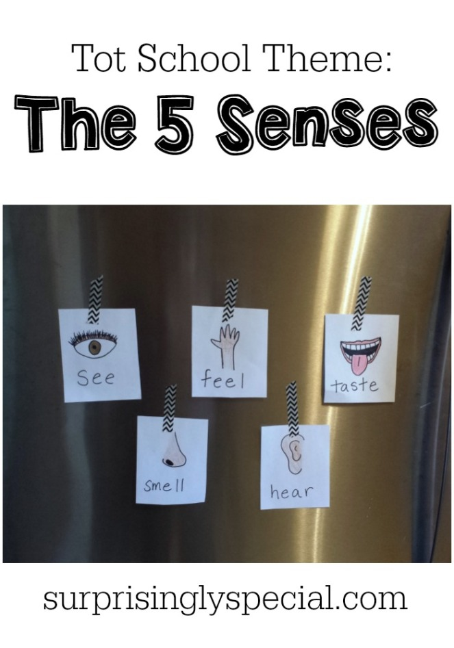 5 senses toddler activities