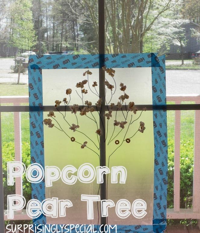 popcorn pear tree