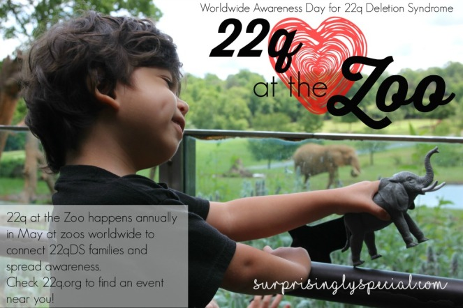 22q at the zoo event