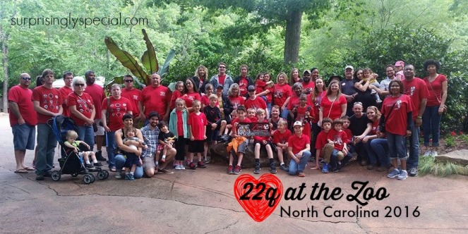 22q at the zoo NC group